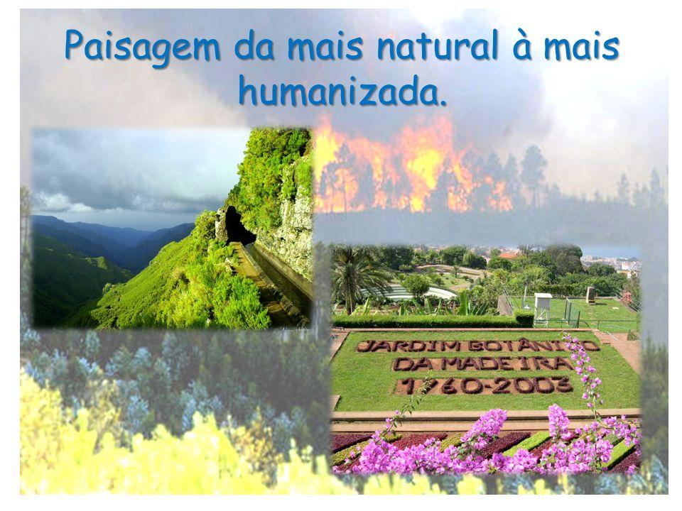 Paisagem da mais natural à mais humanizada.