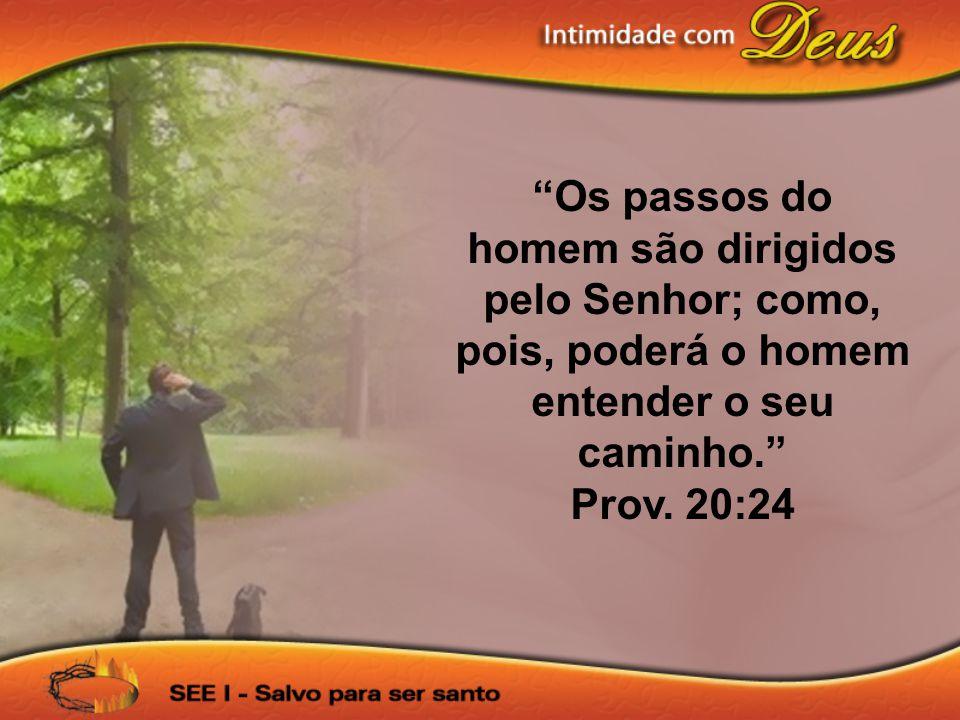 """""""Os passos do homem são dirigidos pelo Senhor; como, pois, poderá o homem entender o seu caminho."""" Prov. 20:24"""