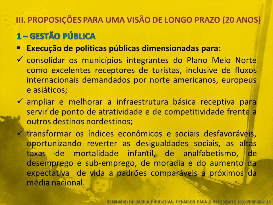 III. PROPOSIÇÕES PARA UMA VISÃO DE LONGO PRAZO (20 ANOS)  Execução de políticas públicas dimensionadas para:  consolidar os municípios integrantes d