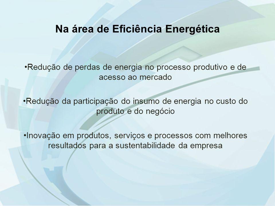 Na área de Eficiência Energética •Redução de perdas de energia no processo produtivo e de acesso ao mercado •Redução da participação do insumo de energia no custo do produto e do negócio •Inovação em produtos, serviços e processos com melhores resultados para a sustentabilidade da empresa
