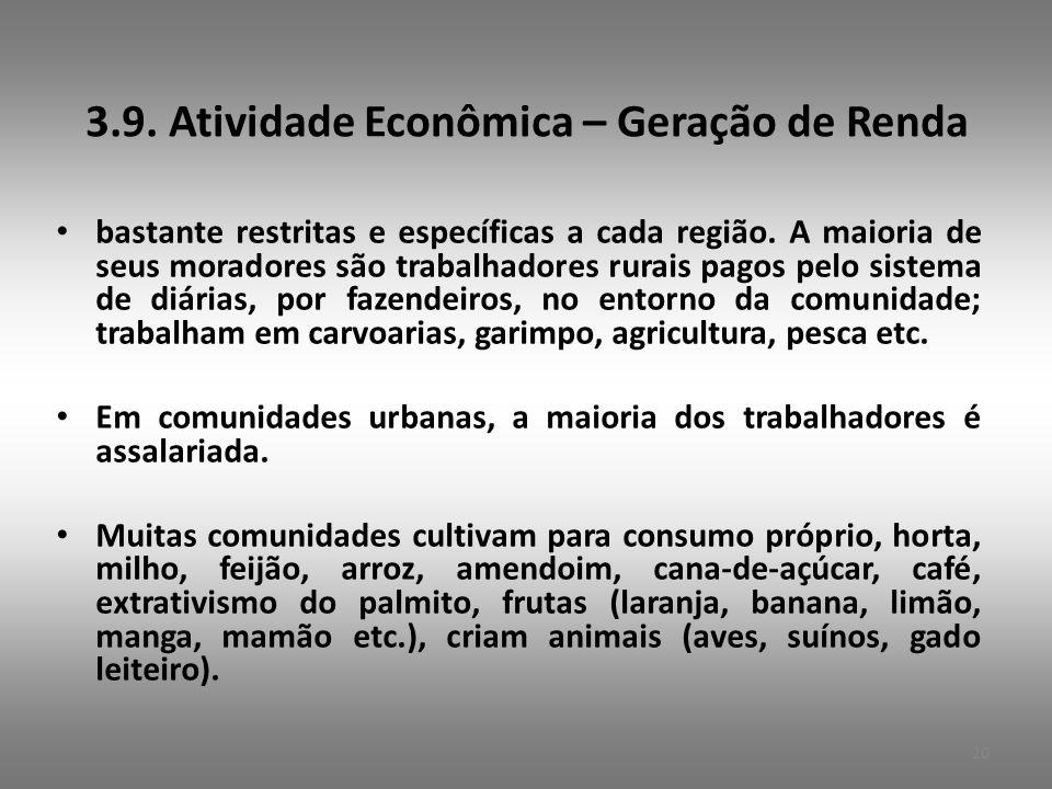 3.9.Atividade Econômica – Geração de Renda • bastante restritas e específicas a cada região.