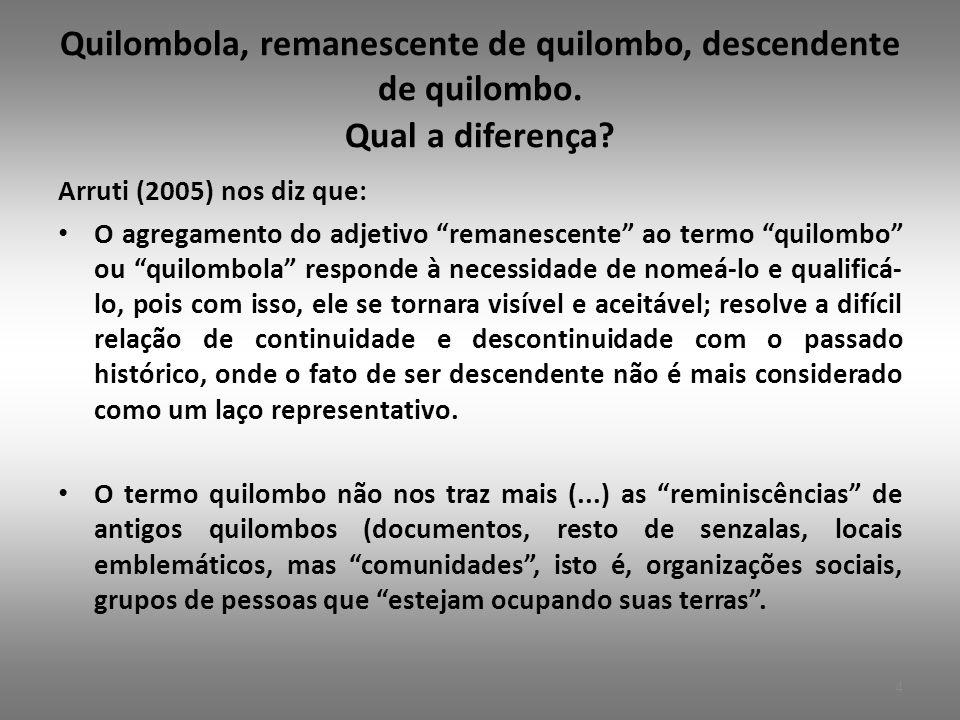 Quilombola, remanescente de quilombo, descendente de quilombo.