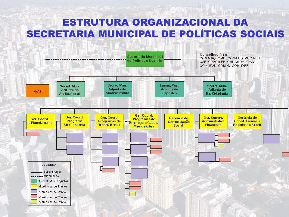 ESTRUTURA ORGANIZACIONAL DA SECRETARIA MUNICIPAL DE POLÍTICAS SOCIAIS