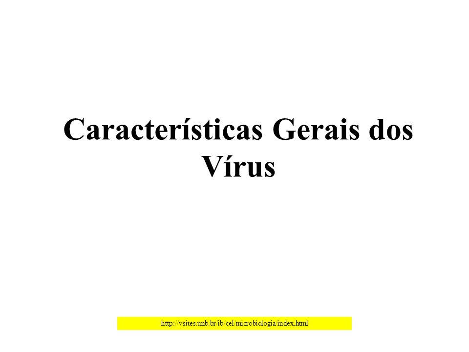 Características Gerais dos Vírus http://vsites.unb.br/ib/cel/microbiologia/index.html