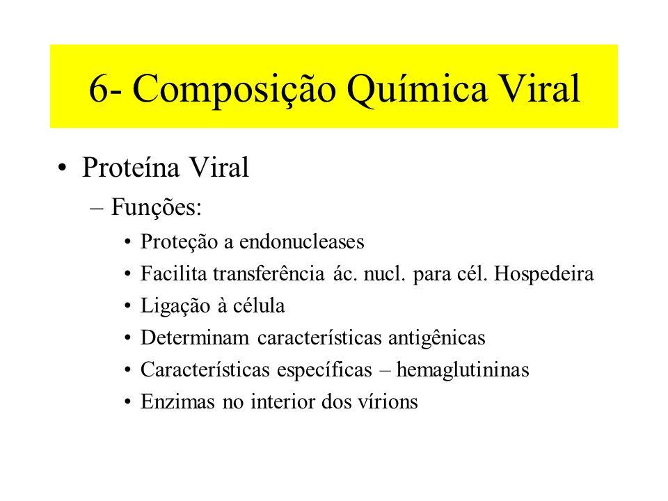 6- Composição Química Viral •Proteína Viral –Funções: •Proteção a endonucleases •Facilita transferência ác.