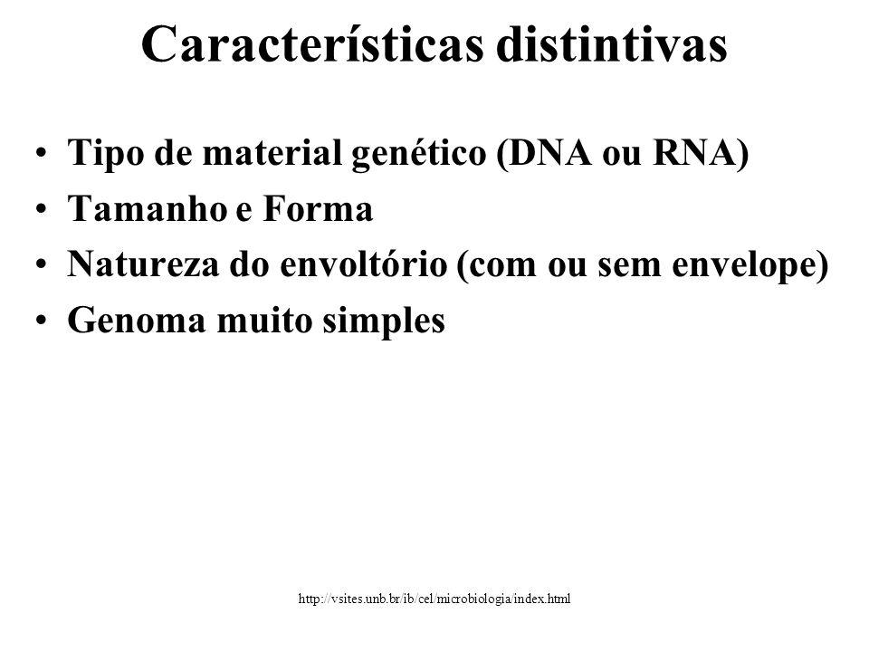 •Tipo de material genético (DNA ou RNA) •Tamanho e Forma •Natureza do envoltório (com ou sem envelope) •Genoma muito simples Características distintivas http://vsites.unb.br/ib/cel/microbiologia/index.html