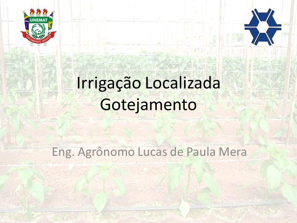 Irrigação Localizada Gotejamento Eng. Agrônomo Lucas de Paula Mera