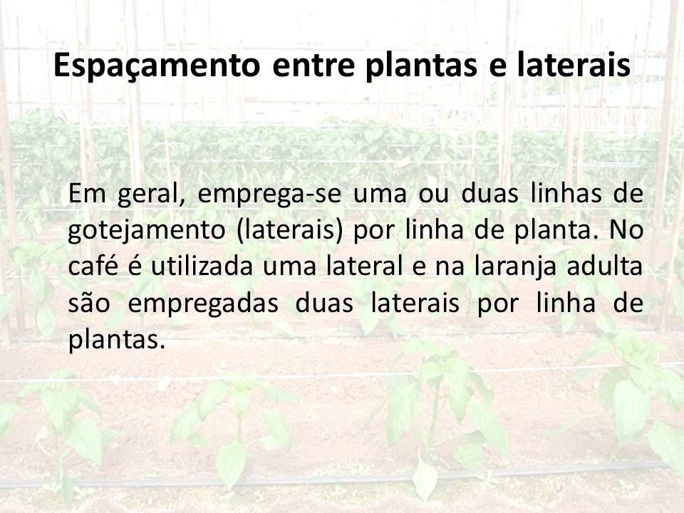 Espaçamento entre plantas e laterais Em geral, emprega-se uma ou duas linhas de gotejamento (laterais) por linha de planta.