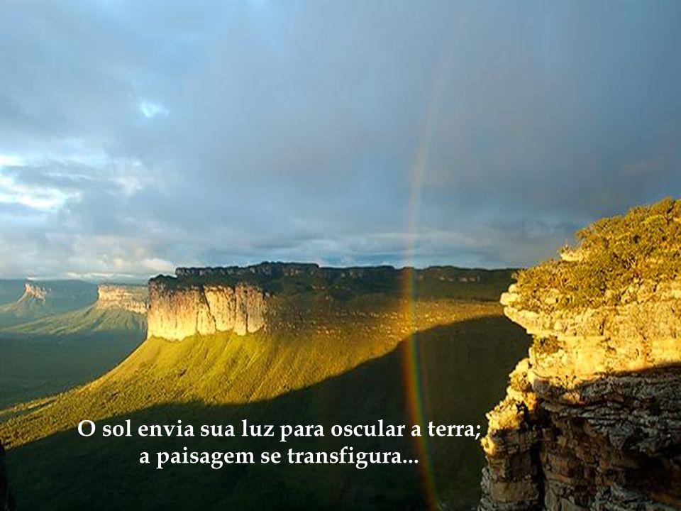 Cachoeira do Ramalho Um Criador que colocou em cada ser uma mensagem...
