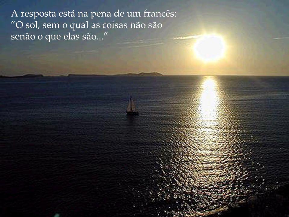 A resposta está na pena de um francês: O sol, sem o qual as coisas não são senão o que elas são...