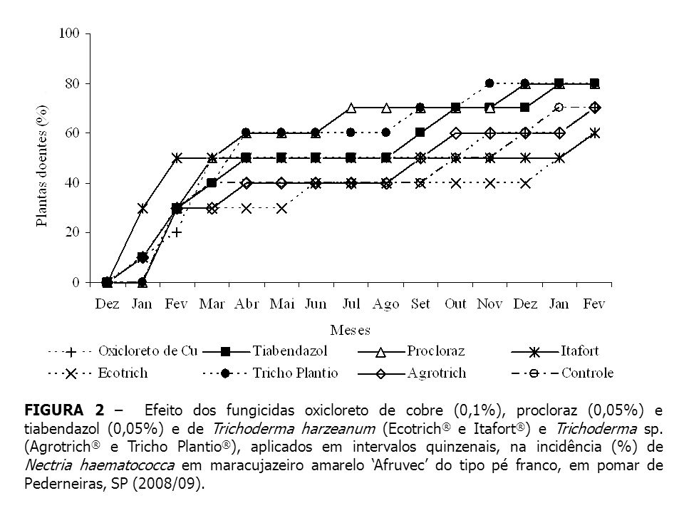 FIGURA 2 – Efeito dos fungicidas oxicloreto de cobre (0,1%), procloraz (0,05%) e tiabendazol (0,05%) e de Trichoderma harzeanum (Ecotrich ® e Itafort ® ) e Trichoderma sp.