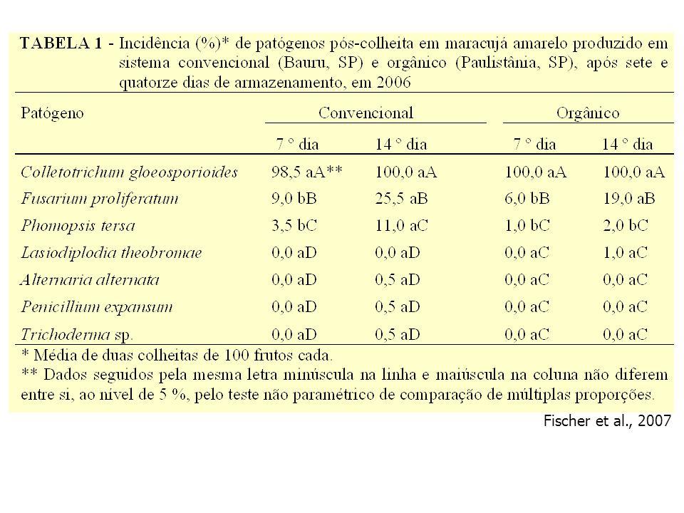 Fischer et al., 2007