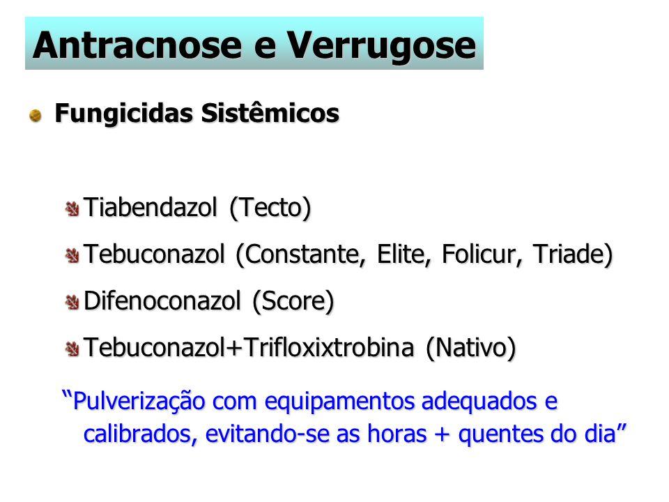 Fungicidas Sistêmicos Tiabendazol (Tecto) Tebuconazol (Constante, Elite, Folicur, Triade) Difenoconazol (Score) Tebuconazol+Trifloxixtrobina (Nativo) Pulverização com equipamentos adequados e calibrados, evitando-se as horas + quentes do dia Antracnose e Verrugose