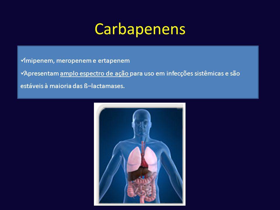 Carbapenens  Imipenem, meropenem e ertapenem  Apresentam amplo espectro de ação para uso em infecções sistêmicas e são estáveis à maioria das ß–lact
