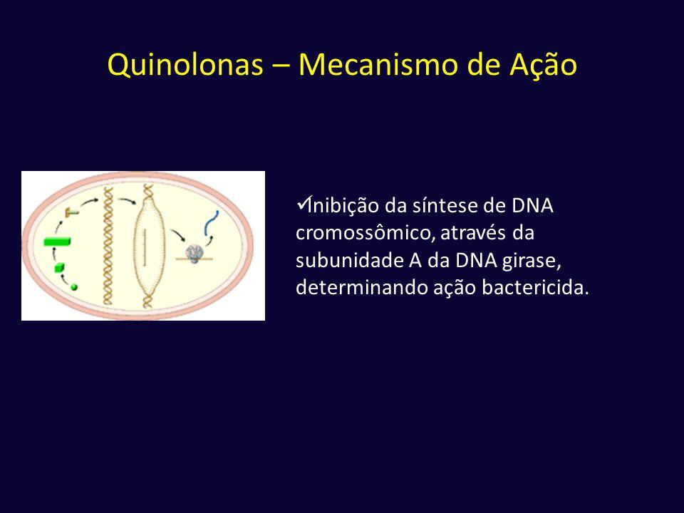 Quinolonas – Mecanismo de Ação  Inibição da síntese de DNA cromossômico, através da subunidade A da DNA girase, determinando ação bactericida.