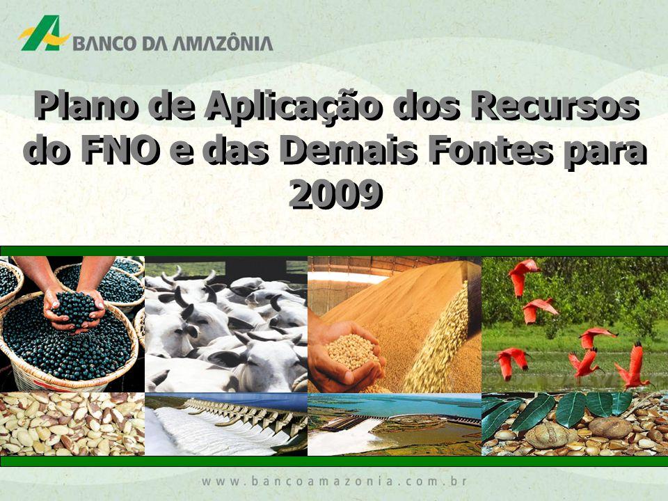 Plano de Aplicação dos Recursos do FNO e das Demais Fontes para 2009