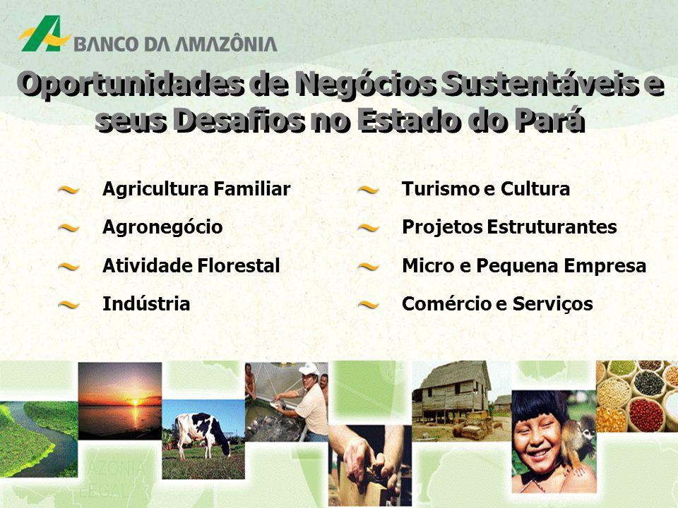 Agricultura Familiar Agronegócio Atividade Florestal Indústria Turismo e Cultura Projetos Estruturantes Micro e Pequena Empresa Comércio e Serviços Oportunidades de Negócios Sustentáveis e seus Desafios no Estado do Pará