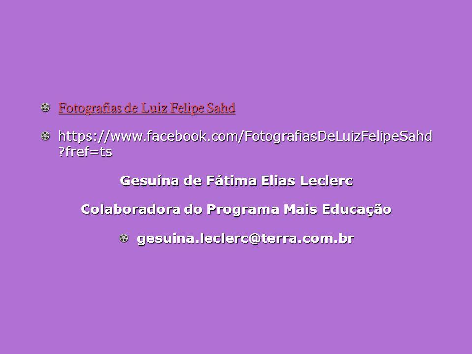 Fotografias de Luiz Felipe Sahd Fotografias de Luiz Felipe Sahd https://www.facebook.com/FotografiasDeLuizFelipeSahd ?fref=ts Gesuína de Fátima Elias Leclerc Colaboradora do Programa Mais Educação gesuina.leclerc@terra.com.br