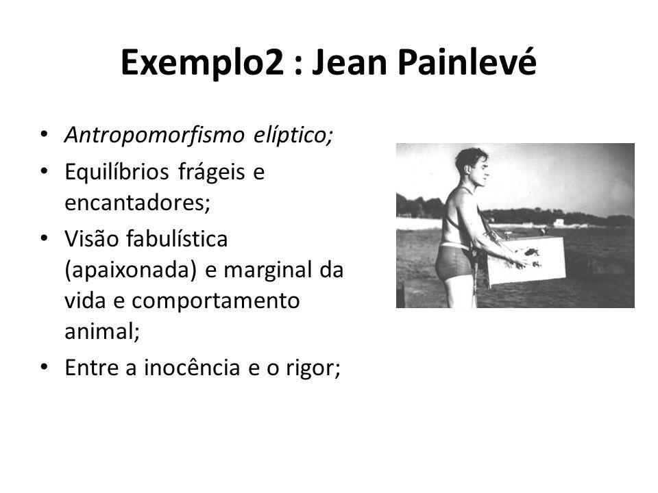 Exemplo2 : Jean Painlevé • Antropomorfismo elíptico; • Equilíbrios frágeis e encantadores; • Visão fabulística (apaixonada) e marginal da vida e comportamento animal; • Entre a inocência e o rigor;