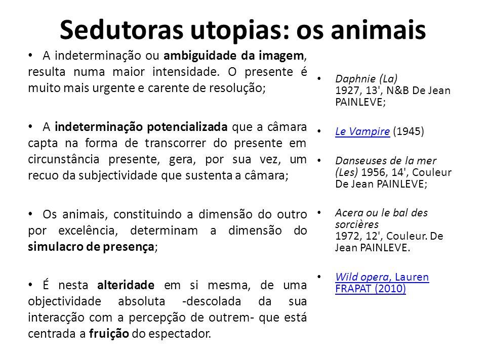 Sedutoras utopias: os animais • A indeterminação ou ambiguidade da imagem, resulta numa maior intensidade. O presente é muito mais urgente e carente d