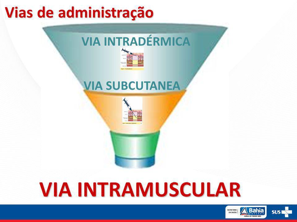 Vias de administração VIA INTRAMUSCULAR VIA INTRADÉRMICA VIA SUBCUTANEA