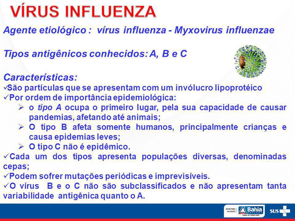 Agente etiológico : vírus influenza - Myxovirus influenzae Tipos antigênicos conhecidos: A, B e C Características:  São partículas que se apresentam