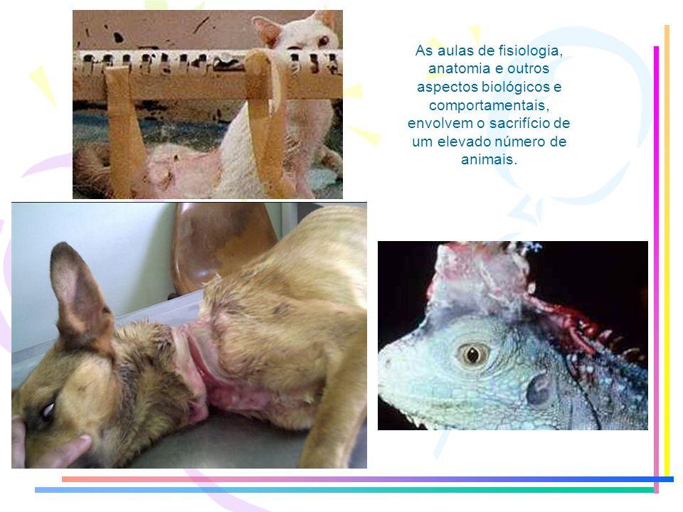 Muitos estudos, como a biologia, a medicina humana e veterinária, têm recorrido à utilização de animais, desde insetos até mamíferos. E quem diria, at