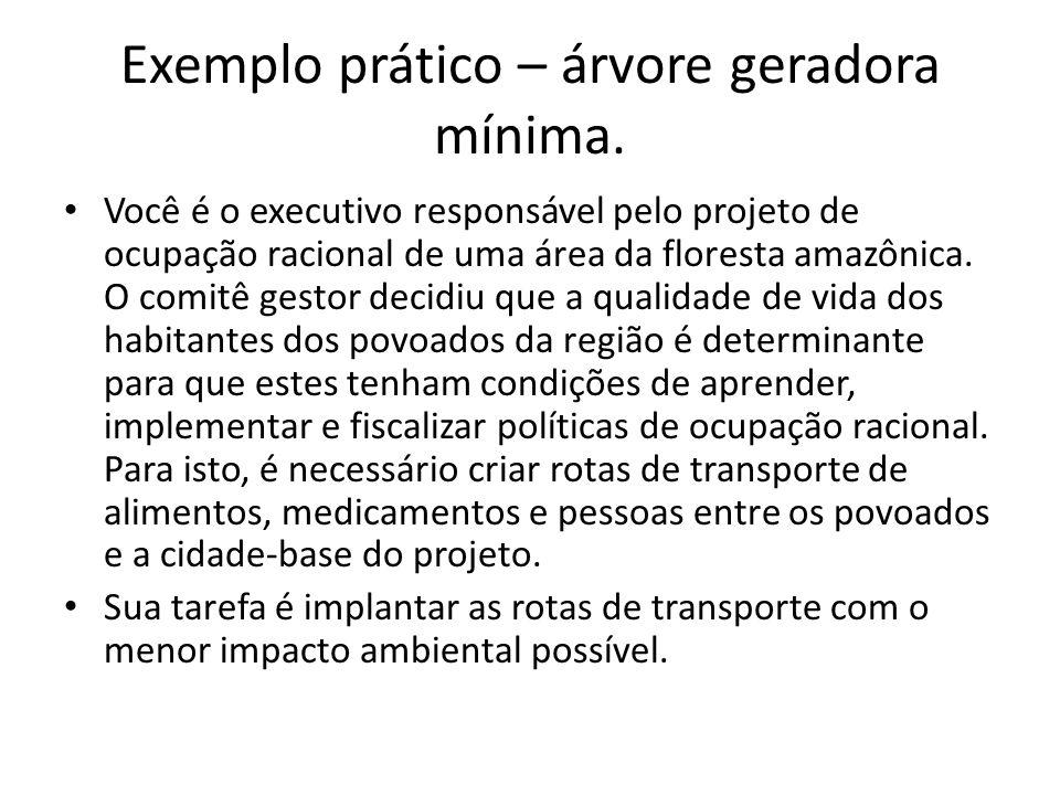 Exemplo prático – árvore geradora mínima. • Você é o executivo responsável pelo projeto de ocupação racional de uma área da floresta amazônica. O comi