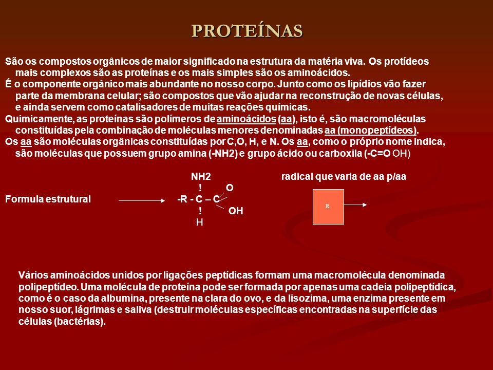 PROTEÍNAS São os compostos orgânicos de maior significado na estrutura da matéria viva. Os protídeos mais complexos são as proteínas e os mais simples