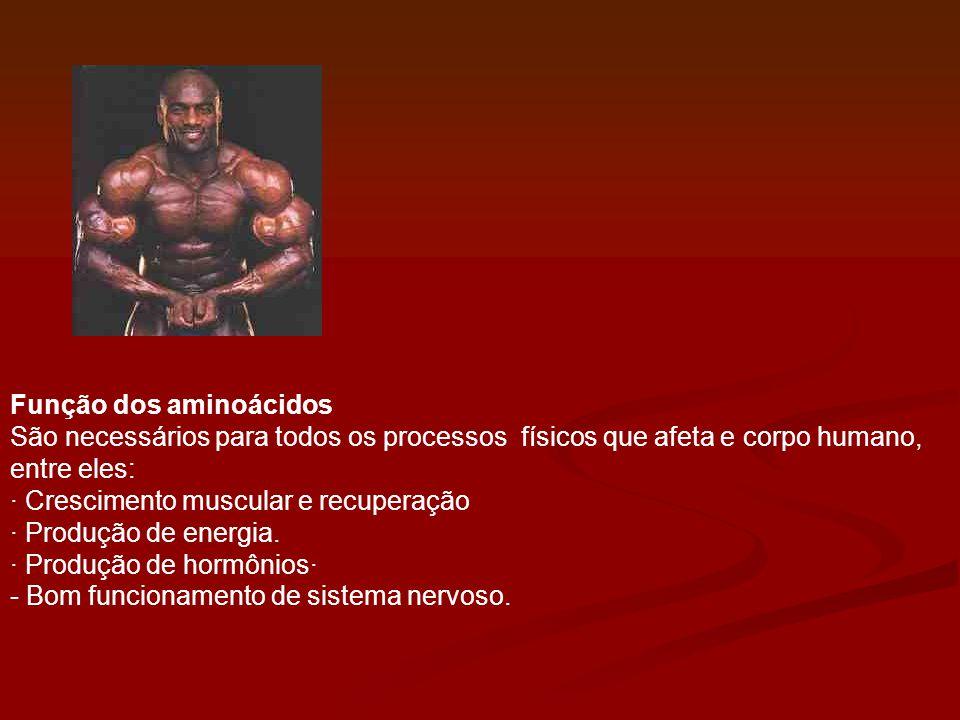 Função dos aminoácidos São necessários para todos os processos físicos que afeta e corpo humano, entre eles: · Crescimento muscular e recuperação · Pr
