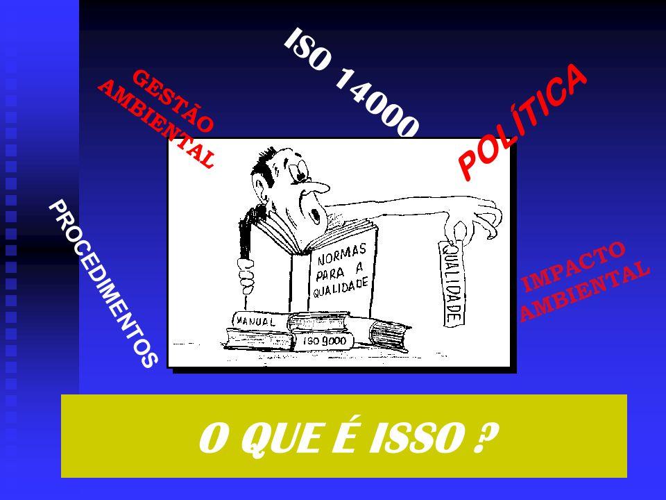 ISO 14000 PROCEDIMENTOS GESTÃO AMBIENTAL POLÍTICA IMPACTO AMBIENTAL O QUE É ISSO ?