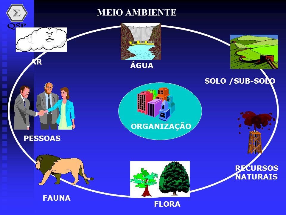 MEIO AMBIENTE ÁGUA SOLO /SUB-SOLO RECURSOS NATURAIS FLORA FAUNA PESSOAS AR ORGANIZAÇÃO