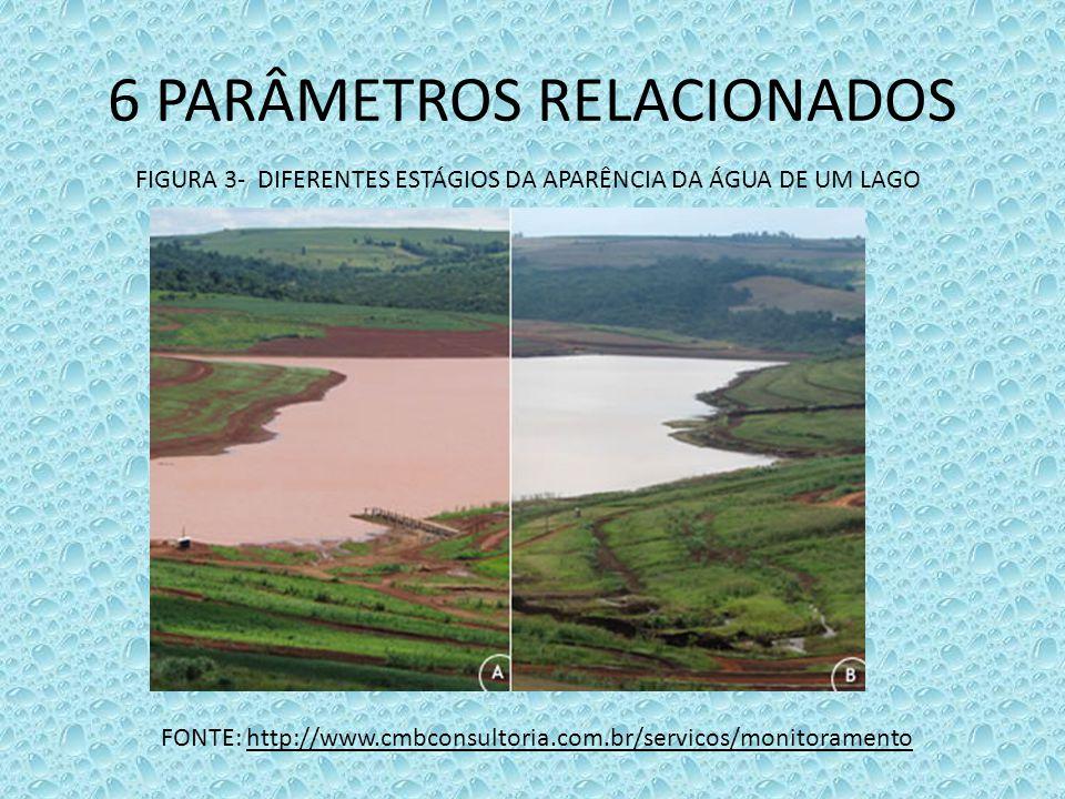 6 PARÂMETROS RELACIONADOS FIGURA 3- DIFERENTES ESTÁGIOS DA APARÊNCIA DA ÁGUA DE UM LAGO FONTE: http://www.cmbconsultoria.com.br/servicos/monitoramento