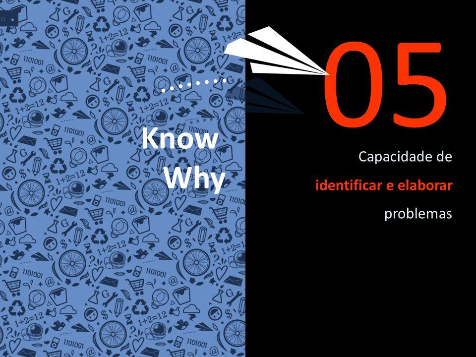 Capacidade de identificar e elaborar problemas 05 Know Why