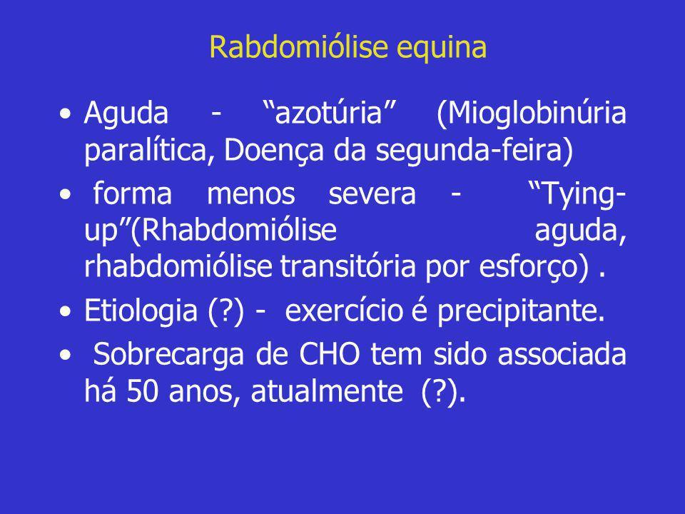 "Rabdomiólise equina •Aguda - ""azotúria"" (Mioglobinúria paralítica, Doença da segunda-feira) • forma menos severa - ""Tying- up""(Rhabdomiólise aguda, rh"