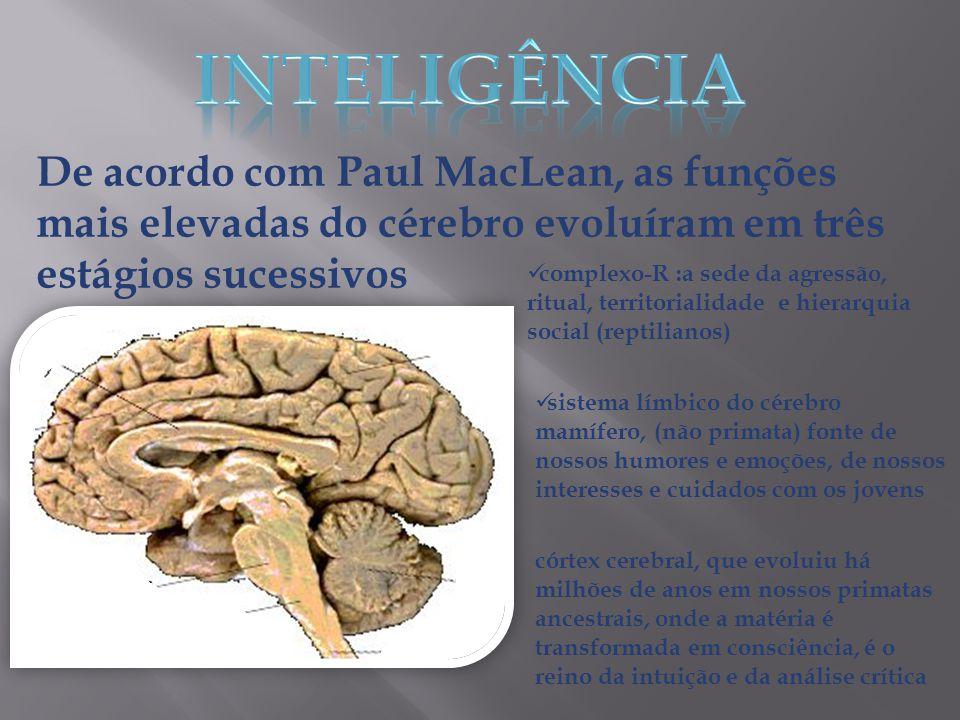 De acordo com Paul MacLean, as funções mais elevadas do cérebro evoluíram em três estágios sucessivos  complexo-R :a sede da agressão, ritual, territ