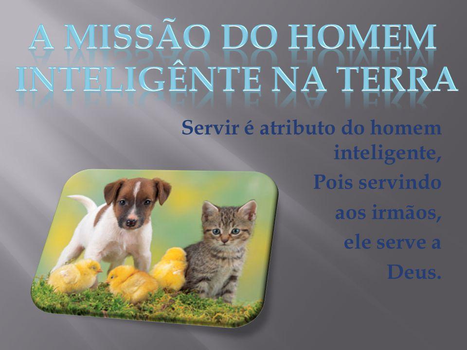 Servir é atributo do homem inteligente, Pois servindo aos irmãos, ele serve a Deus.