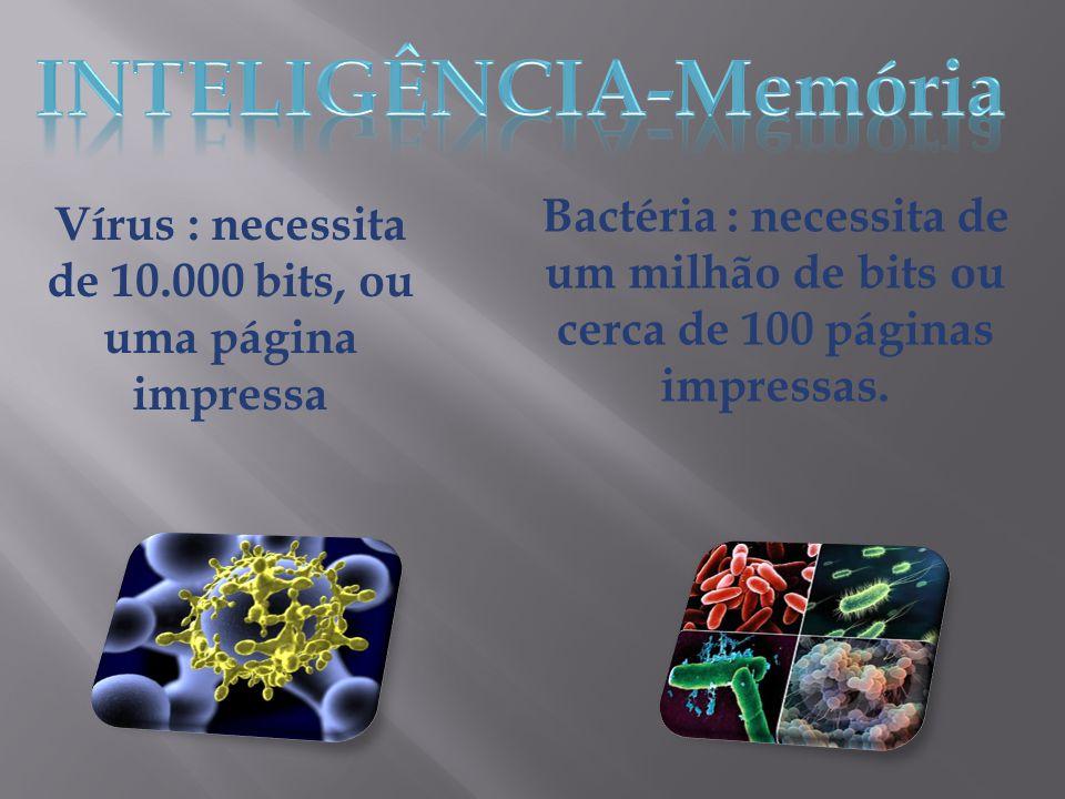 Vírus : necessita de 10.000 bits, ou uma página impressa Bactéria : necessita de um milhão de bits ou cerca de 100 páginas impressas.