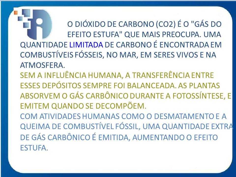 O DIÓXIDO DE CARBONO (CO2) É O