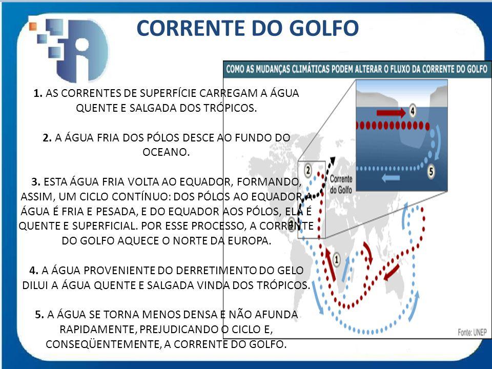 CORRENTE DO GOLFO 1. AS CORRENTES DE SUPERFÍCIE CARREGAM A ÁGUA QUENTE E SALGADA DOS TRÓPICOS. 2. A ÁGUA FRIA DOS PÓLOS DESCE AO FUNDO DO OCEANO. 3. E