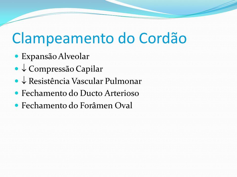 Clampeamento do Cordão  Expansão Alveolar   Compressão Capilar   Resistência Vascular Pulmonar  Fechamento do Ducto Arterioso  Fechamento do Fo