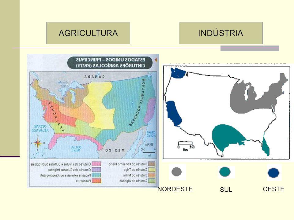 CARACTERÍSTICAS DOS ESTADOS UNIDOS Clima temperado O Mississipi como via de penetração A formação territorial e a marcha para o Oeste Principal pólo d