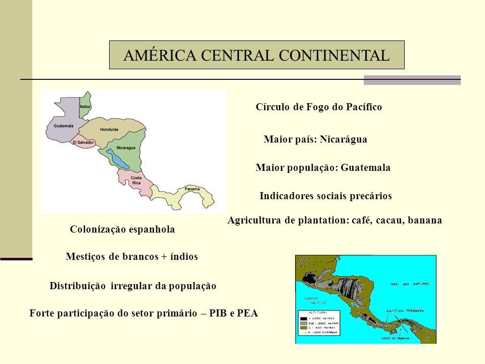 Grande riqueza mineral – prata, petróleo – Golfo do México Plantations – café, cana, algodão Norte - pecuária Regiões industriais: Planalto Central Go