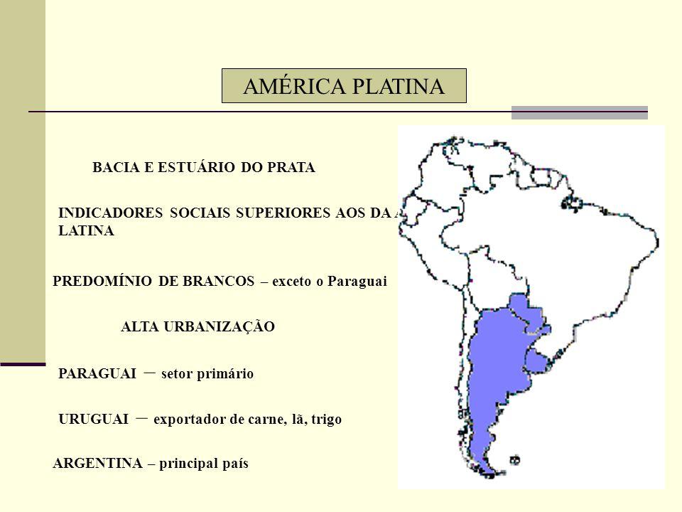 AMÉRICA ANDINA ANDES – ÚMIDOS, SECOS (Atacama), FRIOS DOBRAMENTO MODERNO – CÍRCULO DE FOGO DO PACÍFICO PAÍSES POUCO POPULOSOS - COLÔMBIA MISCIGENAÇÃO: