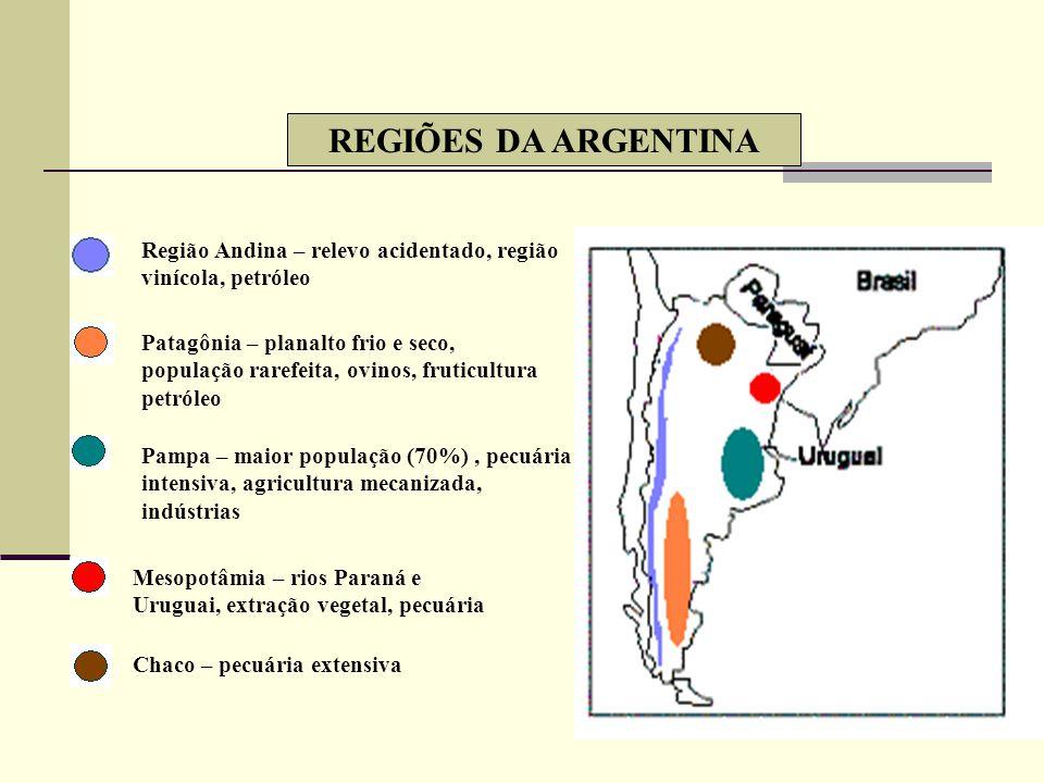 AMÉRICA PLATINA BACIA E ESTUÁRIO DO PRATA INDICADORES SOCIAIS SUPERIORES AOS DA AMÉRICA LATINA PREDOMÍNIO DE BRANCOS – exceto o Paraguai ALTA URBANIZA