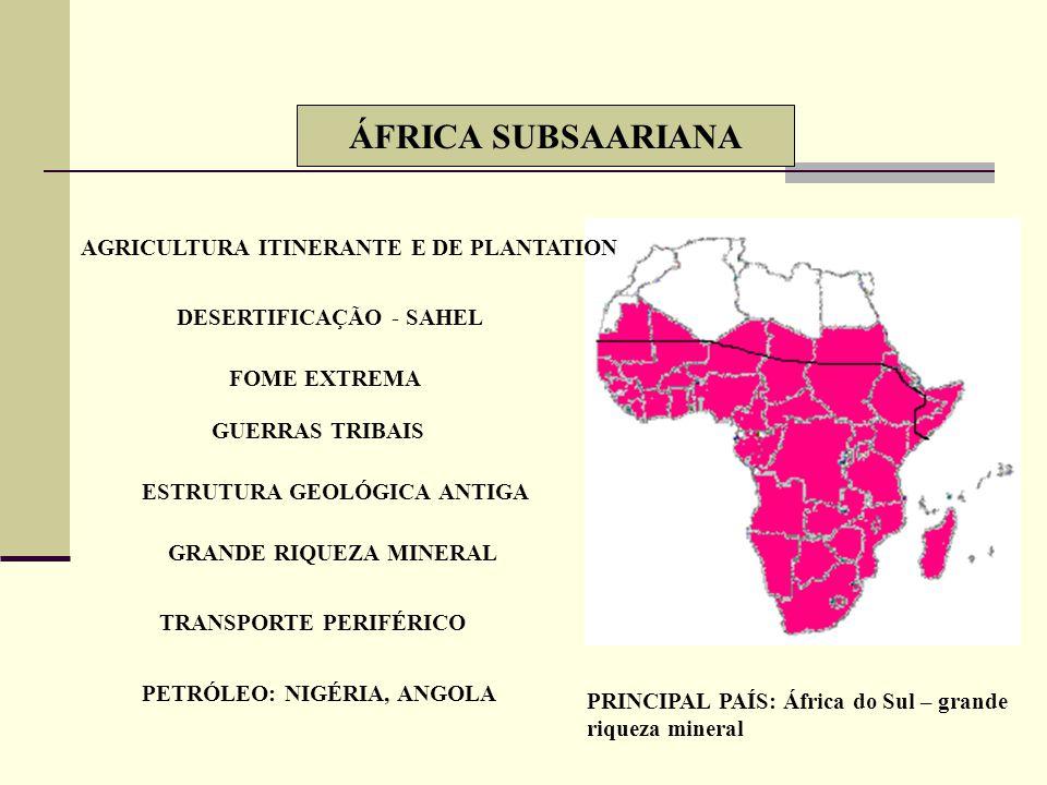 ÁFRICA BRANCA AO NORTE DO SAARA INFLUÊNCIA ÁRABE – SÉCULO VII AGRICULTURA: MAGREB E VALE DO NILO CADEIA DO ATLAS CLIMAS ÁRIDO, SEMI-ÁRIDO, MEDITERRÂNE