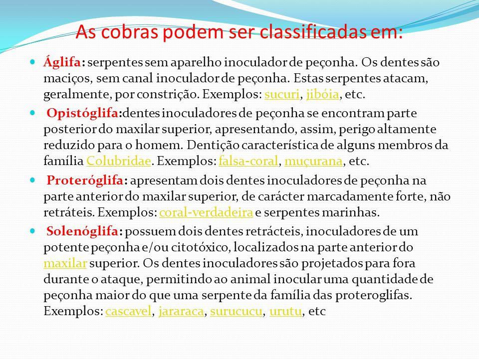 As cobras podem ser classificadas em:  Áglifa: serpentes sem aparelho inoculador de peçonha. Os dentes são maciços, sem canal inoculador de peçonha.