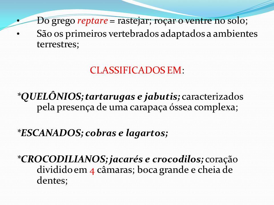 Soros • ANTIBOTRÓPICO : JARARACA ( GÊNERO BOTHROPS); • ANTICROTÁLICO :CASCAVEL ( GÊNERO CROTALUS); • ANTILAQUÉTICO: SURUCUCU (GÊNERO LACHESIS); • ANTIELAPÍDICO: CORAL ( GÊNERO MICRURUS ); • ANTIBOTRÓPICO / CROTÁLICO: JARARACA OU CASCAVEL; • ANTIBOTRÓPICO / LAQUÉTICO: JARARACA OU SURUCUCU.