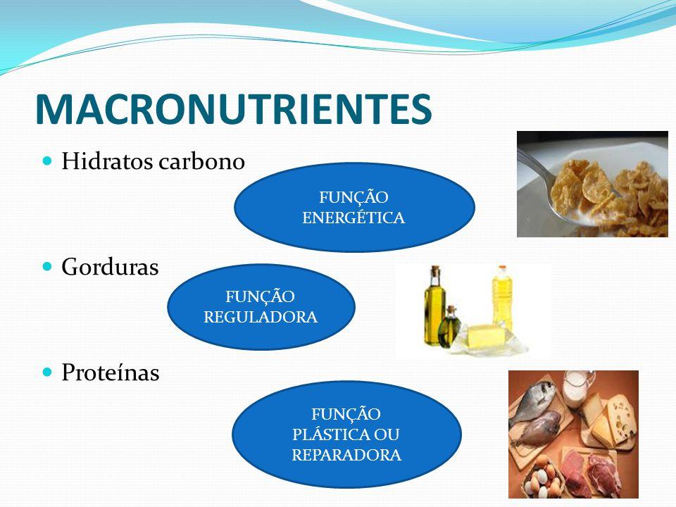 MACRONUTRIENTES  Hidratos carbono  Gorduras  Proteínas FUNÇÃO ENERGÉTICA FUNÇÃO REGULADORA FUNÇÃO PLÁSTICA OU REPARADORA