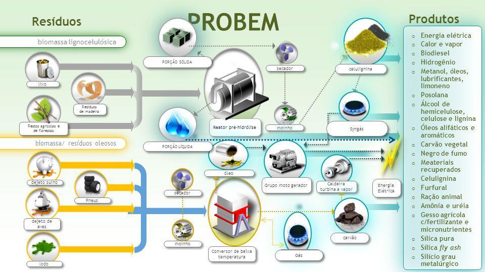 Reator pré-hidrólise Conversor de baixa temperatura Resíduos PROBEM biomassa/ resíduos oleosos biomassa lignocelulósica moinho secador dejeto de aves